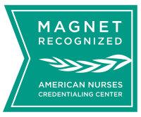 magnet_recognition_logo